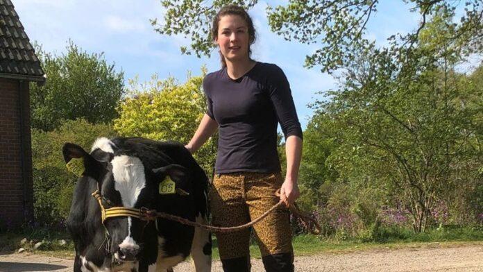 Boerin Annemiek uiers koeien