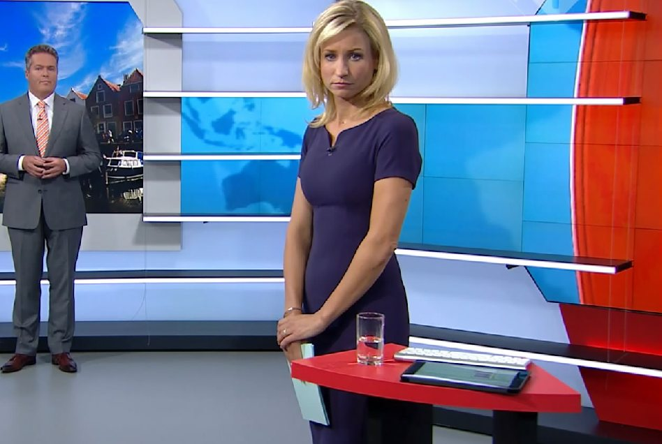 Dionne Stax Journaal